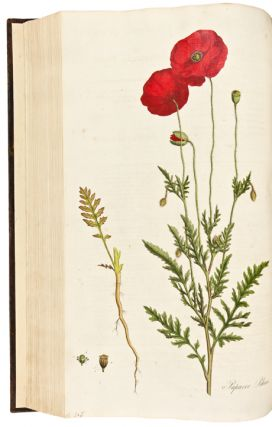 Flora Londinensis; or, Plates and Descriptions of such Plants as grow wild in the Environs of London. William CURTIS.