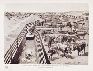 Historical and Biographical Record of the Cattle Industry and the Cattlemen of Texas and Adjacent Territory.