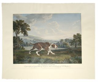 The Spanish Pointer, Engraved after an Original Picture of Mr. George Stubbs, in the Possession...