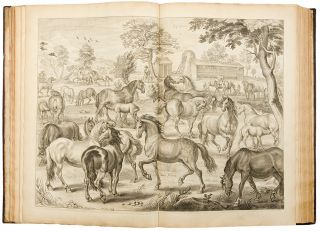 A General System of Horsemanship in all its branches: containing a faithful translation of that most noble and useful work of his Grace, William Cavendish, Duke of Newcastle [vol. II: containing, I. Directions for the Choice of Stallions and Mares ... II. The Manner of keeping, soiling, training, and excercising Race-Horses ... III. The Perfect Knowledge of Horses ... Translated from the French Edition ... by Gaspar de Saunier ... IV. The Osteology and Mycology of a Horse ... To which is added, a large collection of recipes ...