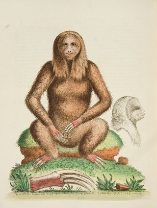A Natural History of Uncommon Birds, and of Some Other Rare and Undescribed Animals ... [With:] Gleanings of Natural History Exhibiting Figures of Quadrupeds, Birds, Insects, Plants, &c.