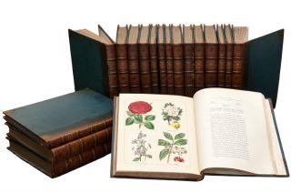 The Botanic Garden, consisting of highly finished representations of hardy ornamental flowering...