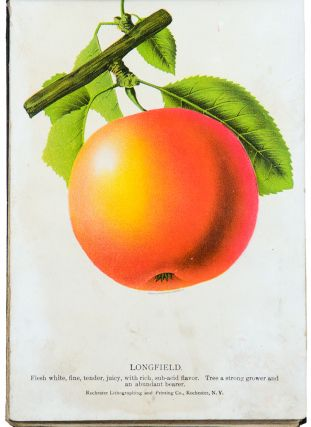 The Nurseryman's Specimen Book of American Fruits, Flowers, Ornamental Trees, Shrubs, Roses &c. Rochester Lithographing Company, successors to D. M. Dewey's American Fruit & Flower Plates ...