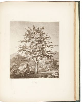 An Essay on Trees in Landscape; or, an Attempt to Shew the Propriety and importance of...