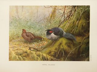 A Monograph of the Pheasants
