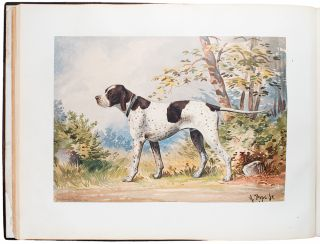 Celebrated Dogs of America. Alexander POPE, Jr