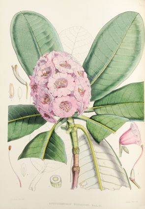 The Rhododendrons of Sikkim-Himalaya; being an account, botanical and geographical of the...