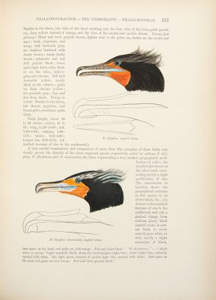 A History of North American Birds ... Land Birds ... [With:] Memoirs of the Museum of Comparative Zoology at Harvard College. Vol. XII. The Water Birds of North America