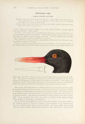 A History of North American Birds ... Land Birds ... [With:] Memoirs of the Museum of Comparative...