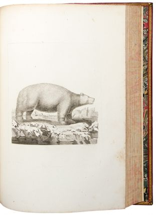 [Large paper proof impressions of the plates from his History of Quadrupeds]. Thomas PENNANT.