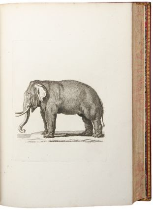 [Large paper proof impressions of the plates from his History of Quadrupeds]