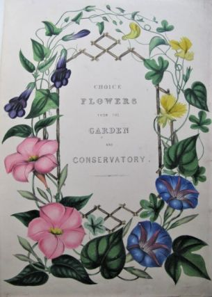 Choice Flowers: A Collection of Drawings of Favourite Flowers, from the Garden and the...