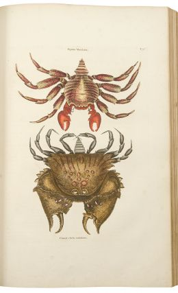 The Natural History of Carolina, Florida, and the Bahama Islands: containing the figures of birds, beasts, fishes, serpents, insects, and plants; particularly, those not hitherto described, or incorrectly figured by former authors, with their descriptions in English and French