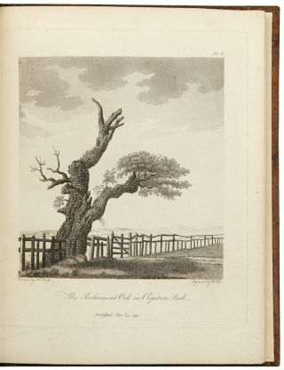 Descriptions and sketches of some remarkable oaks, in the park at Welbeck, in the county of...
