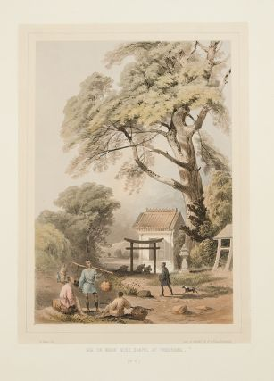 Graphic Scenes of the Japan Expedition