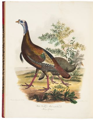 American Ornithology; or, the Natural History of Birds inhabiting the United States, not given by...