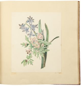 An album of drawings and watercolours of natural history and topographical subjects, and including a original watercolour of a bouquet of bluebells and wood-anemones by Margaret Meen