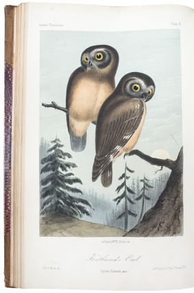 Illustrations of the Birds of California, Texas, Oregon, British and Russian America. Intended to...