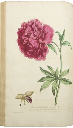 The British Herbal, containing one hundred plates of the most beautiful and scarce flowers and useful medicinal plants which blow in the open air of Great Britain, accurately coloured from nature with their botanical characters, and short account of their cultivation