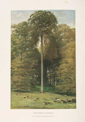 The Trees of Great Britain & Ireland. Henry John ELWES, Augustine HENRY