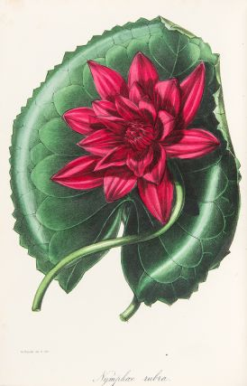 Paxton's Magazine of Botany, and Register of Flowering Plants