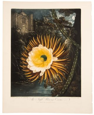 The Night Blowing Cereus. Robert John THORNTON, - Peter REINAGLE, Abraham PETHER