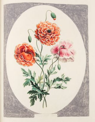 A Collection of Flowers drawn after Nature, & disposed in an Ornamental & Picturesque Manner