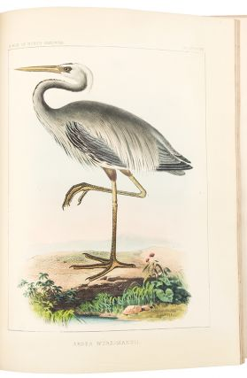 The Birds of North America; the descriptions of species based chiefly on the collections in the...