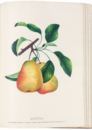 The Specimen Book of Fruits, Flowers and Ornamental Trees. Carefully Drawn and Colored from Nature for the Use of Nurserymen.