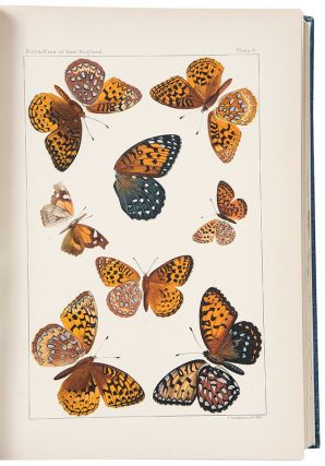 The Butterflies of the Eastern United States and Canada with Special Reference to New England